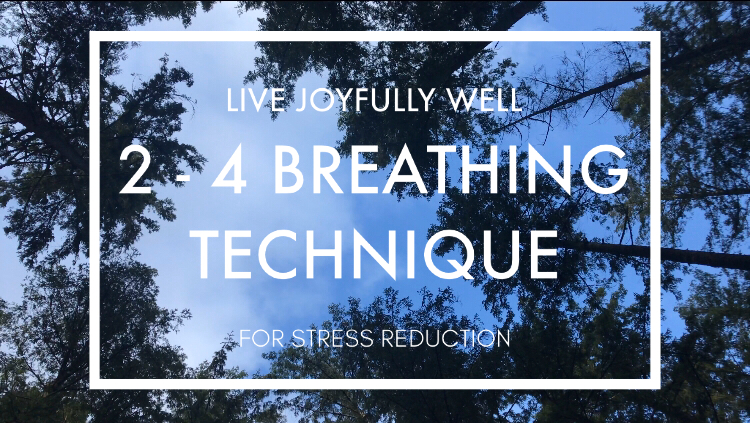 2-4 count breathing technique guided meditation